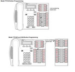 nortel t7316 label template nortel phone label template t7316 search engine at