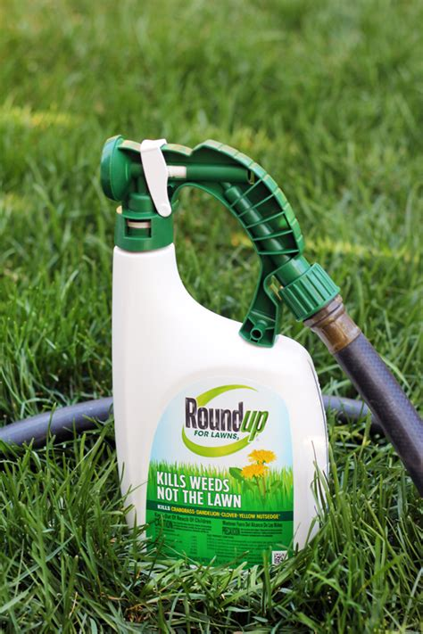 roundup for lawns outdoor style 6 favorite lawn for