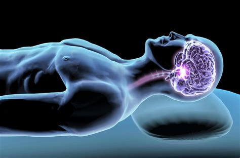Detoxing The Csf by Brain May Flush Out Toxins During Sleep Detox Foods