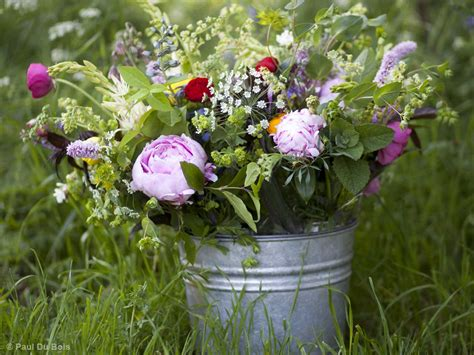 How To Start A Flower Garden In Your Backyard by The Perils Of Starting A Cut Flower Farm Saga