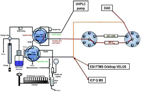 diode array detector pdf 3000 diode array detector 28 images dionex ultimate 3000 diode array detector liquid