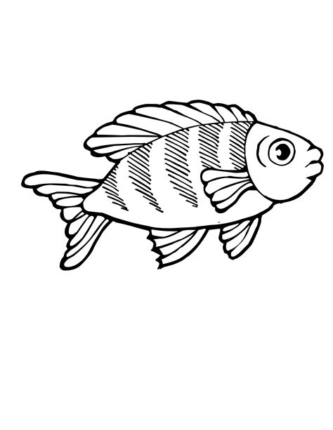 fish and chips coloring images