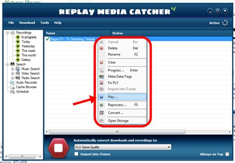 tutorial video streaming software tutorial replay media catcher 4 4 3 tutorial