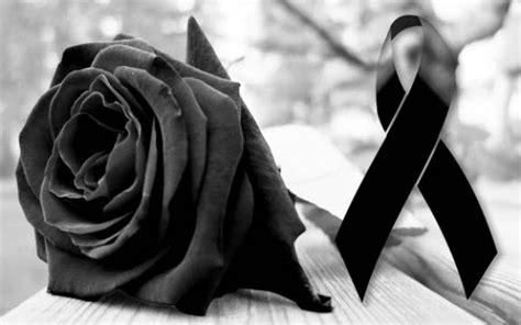 imagenes de luto x amor monos negros con rosa imagui