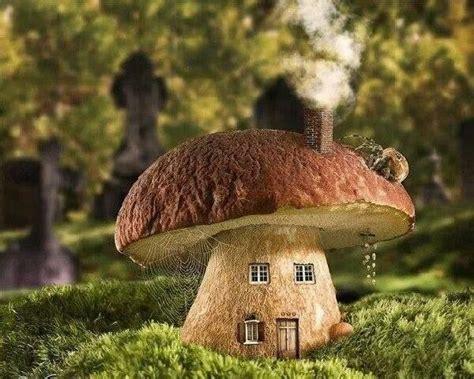 mushroom house mushroom house fantasy art fairy tales pinterest