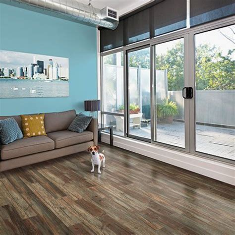 dogs love pergo xp weatherdale pine flooring too by