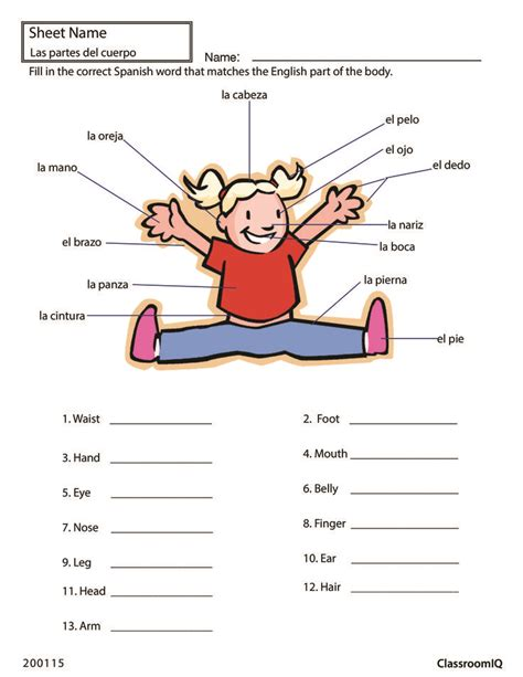 Parts In Worksheet by 17 Best Images About Worksheets Level 1 On