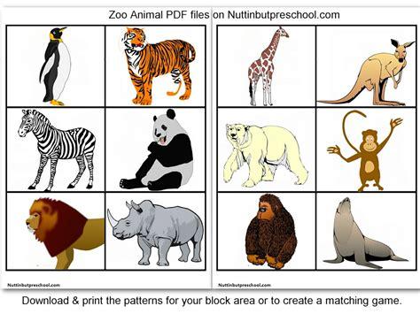 187 zoo animal printables for block corner or matching nuttin but preschool animals zoo