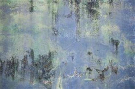 Poudre Blanche Sur Les Murs comment nettoyer la moisissure et de la poudre blanche sur