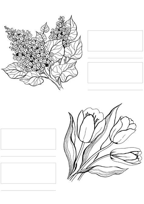 copic coloring flowers copics pinterest