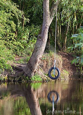 tyre rope swing  river royalty  stock photography image