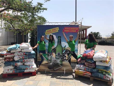 hängematte 200kg hiperdino ha donado 1 200 kg de comida para animales en la