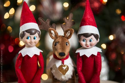 The On The Shelf Reindeer by 12 Facts About On The Shelf You Never Knew Before
