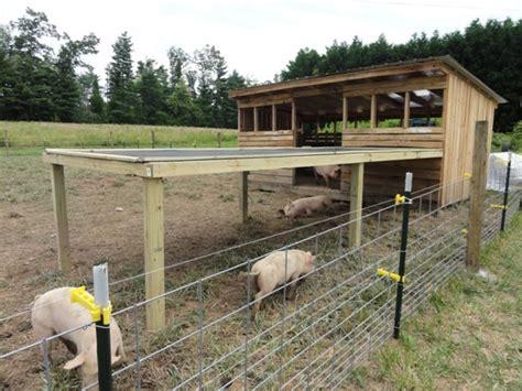 backyard pig farming hog shelter old macdonald pinterest animals