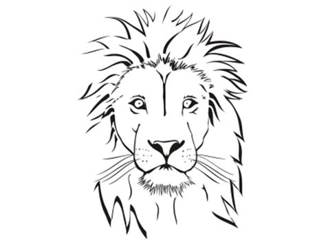 lion head colouring pages
