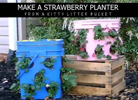 Make A Strawberry Planter by Guide Make A Strawberry Planter From A Litter