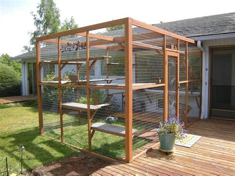 cat owners  building catio spaces   favorite
