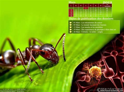 Calendrier Mars 2012 Fond D 233 Cran Calendrier Mars 2012