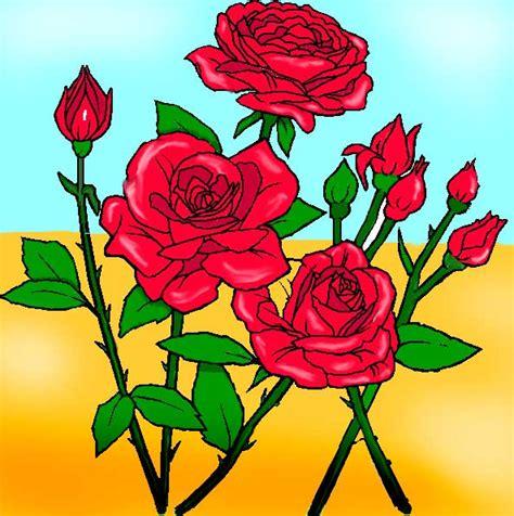 disegno di rosa fiore disegni fiori