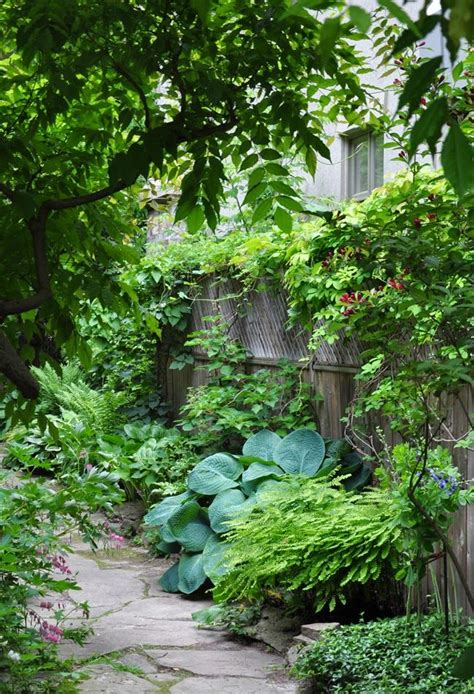Narrow Garden Ideas Best 20 Narrow Garden Ideas On Pinterest Small Gardens Side Yards And Small Garden Design