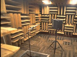 room in minnesota that blocks sound the quietest place on earth minnesota radio news