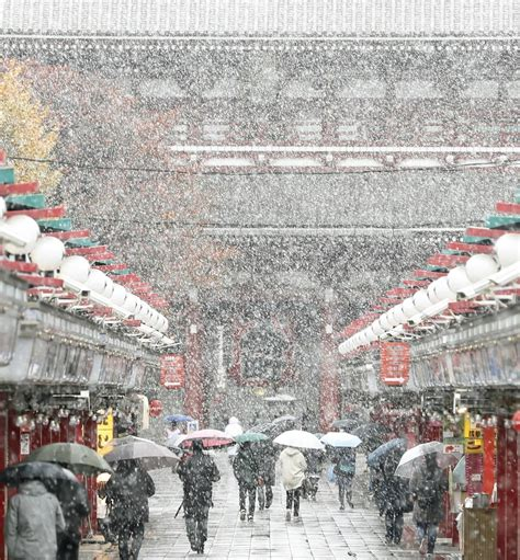 november tokyo snow falls over tokyo for the first time in 54 years tehelka investigations latest news