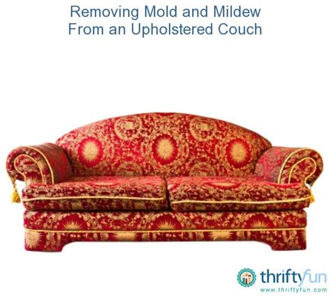 couch mold removing mold and mildew from an upholstered couch couch