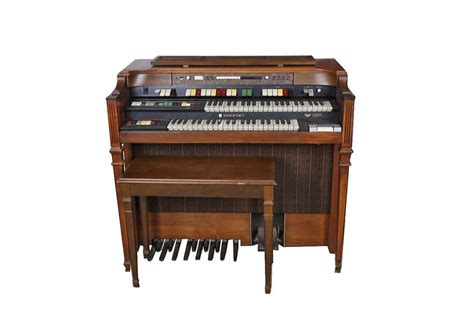 Electric Organ location of your organs location of joints elsavadorla