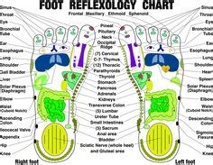 Foot Detox Readings by 1000 Images About Reflexology On