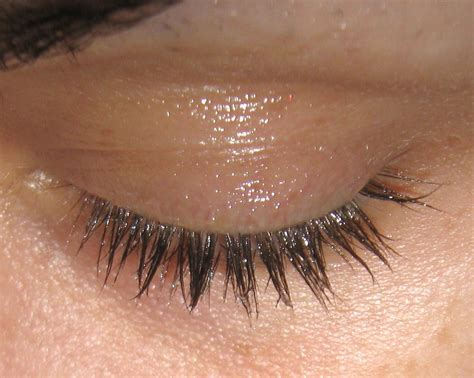 Your Lashes by Tipsnips Make Your Eyelashes Grow No Prescription