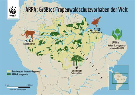 häuser in deutschland regenwaldrettung im format bericht wwf jugend