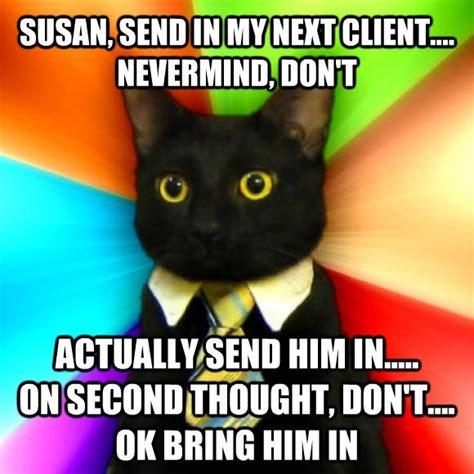 business meme business cat meme