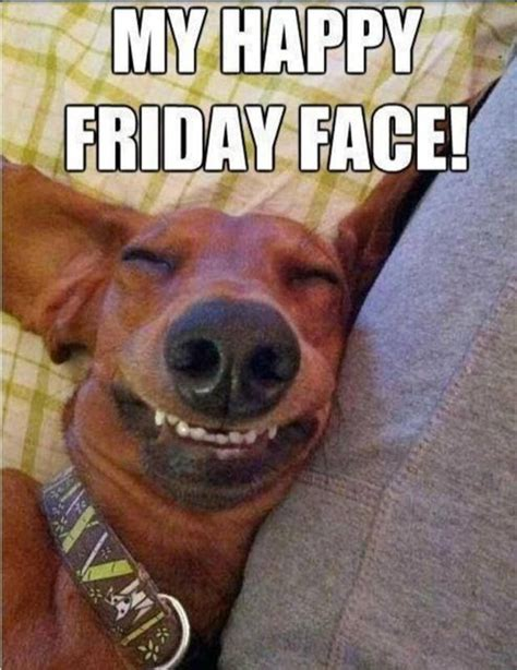 Happy Weekend Meme - my happy friday face pictures photos and images for