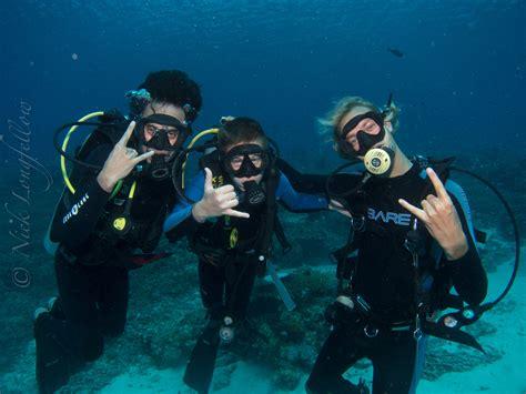 dive courses padi dive courses in komodo