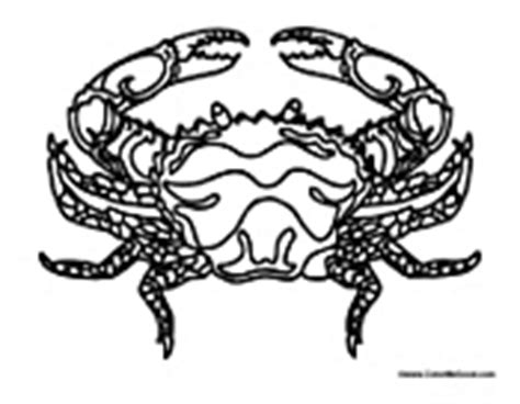 king crab coloring page crab coloring pages
