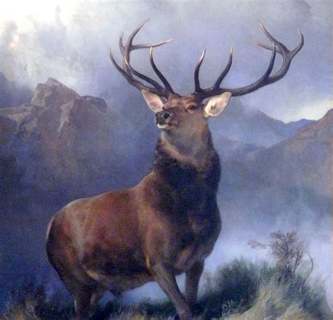 the monarch of the the monarch of the glen 1851 edwin henry landseer wikiart org
