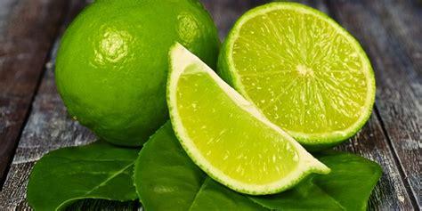 Qnc Jelly Gamat Untuk Varises cara menghilangkan varises dengan jeruk nipis jelly