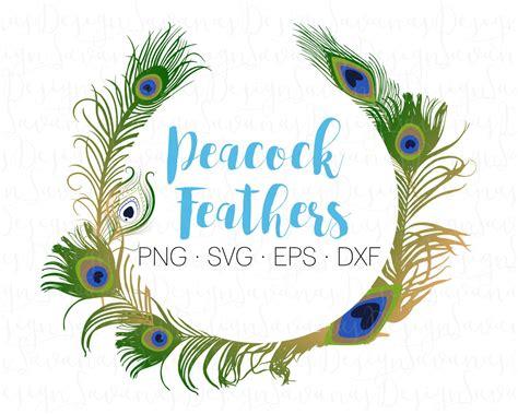 feathers h studio 문신 홍대 peacock feathers svg peafowl feathers peacock svg