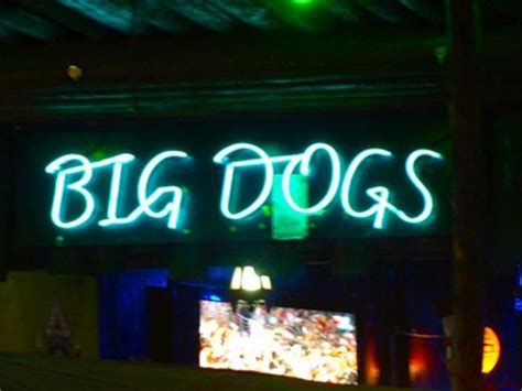 big dogs bar big dogs bar images frompo 1