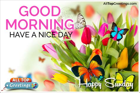 imagenes good morning happy sunday good morning have a nice day happy sunday pictures