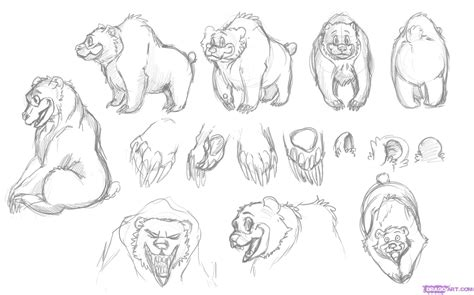 How To Draw A Grizzly Paw