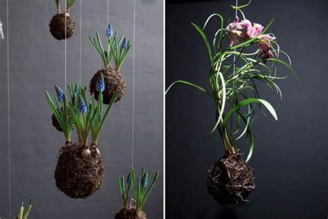 Hanging Garden Decor String Garden Decorations Vertical Gardens And Backyard Ideas