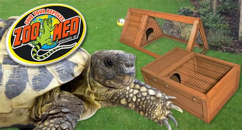 how to build zoo med s outdoor tortoise enclosure