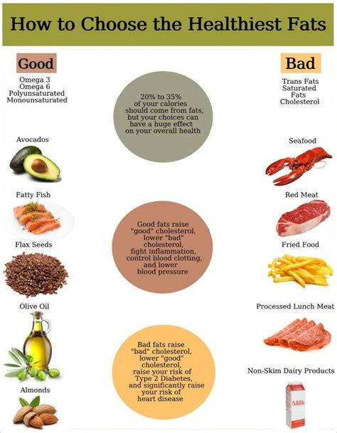 healthy essential fats lipids 140 best images about the 6 essential nutrients on