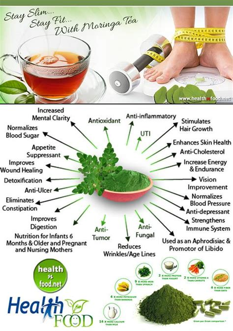 Moringa Detox Side Effects by Moringa Tea Benefits And Side Effects How Nutrition