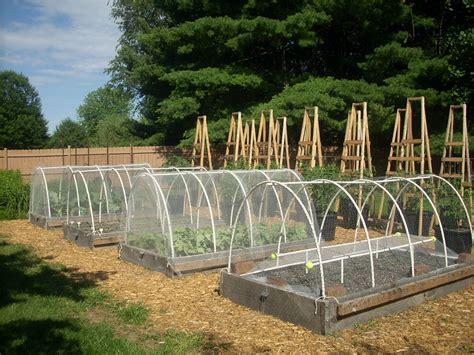 Vegetable Garden Netting The Origins Of Our Vegetable Garden See Gallery