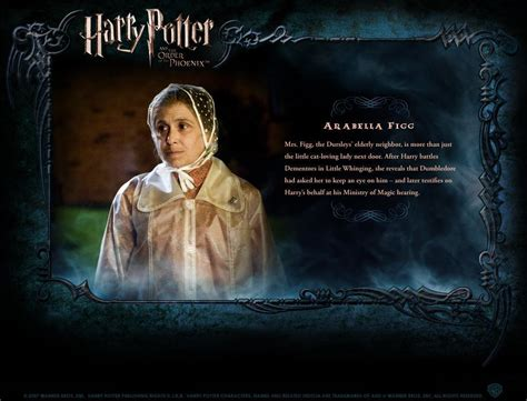 biography of harry potter hp bio harry potter movies photo 1759566 fanpop