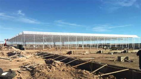 indoor grow supplies colorado springs greenhouses are more efficient for marijuana production