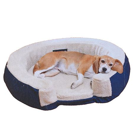 inflatable dog bed inflatable dog bed myideasbedroom com