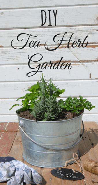 clean how growing without animals will revolutionize dinner and the world books diy tea herb garden zero waste